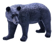 BEAR with head turned 1