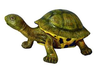 TURTLE-SMALL