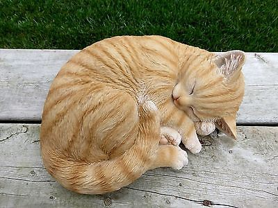 cat-sleeping-lying-down-orange-tabby-2